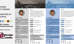 Curriculum Vitae producto editable en 5 colores